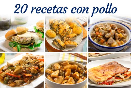 20 recetas con pollo Ybarra